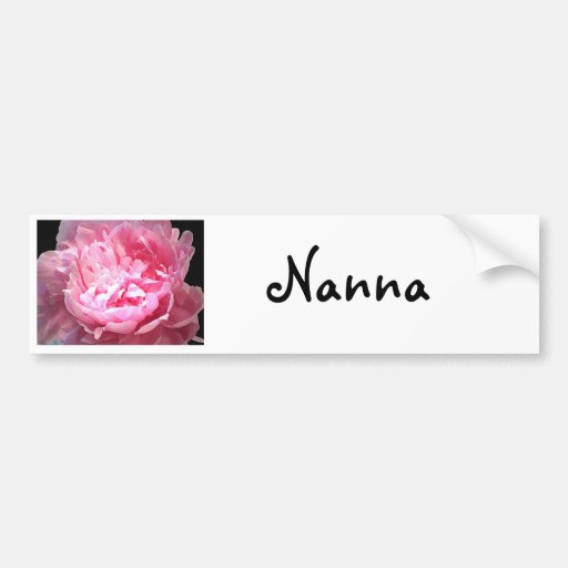 Hatched Pink Peony Car Bumper Sticker