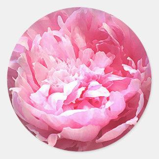 Hatched Pink Peony Classic Round Sticker