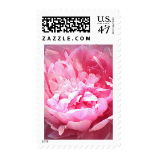 Hatched Pink Peony Postage
