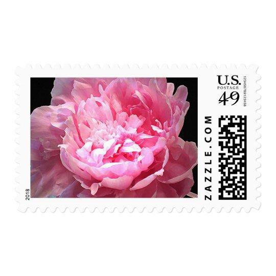 Hatched Pink Peony Wedding Postage