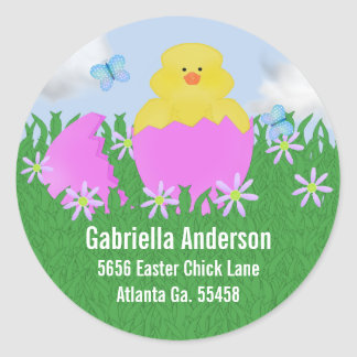 Hatching Baby Duck : Address Stickers