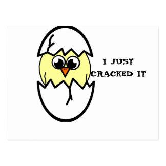 Hatching Chicken Postcard