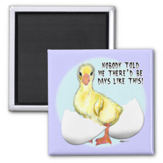 Hatching Egg2 Magnets