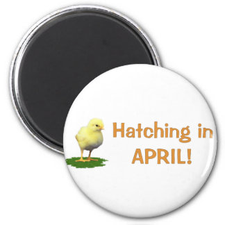 Hatching in April! Maternity/Pregnant Due In April 2 Inch Round Magnet
