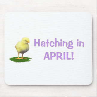 Hatching in April! Maternity/Pregnant Due In April Mouse Pad