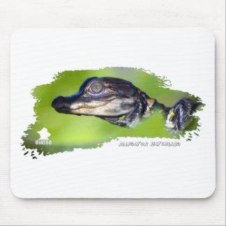 Hatchling 01 del cocodrilo mousepads