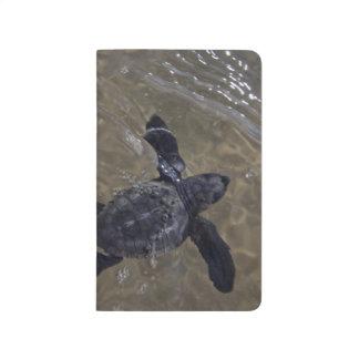 Hatchlings 2 de la tortuga cuaderno grapado