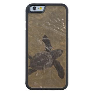 Hatchlings 2 de la tortuga funda de iPhone 6 bumper arce