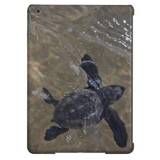 Hatchlings 2 de la tortuga funda para iPad air
