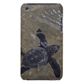 Hatchlings 2 de la tortuga iPod touch Case-Mate cobertura