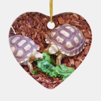 Hatchlings de la tortuga de Sulcata Adorno De Cerámica En Forma De Corazón