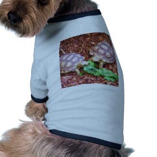 Hatchlings de la tortuga de Sulcata Camiseta Con Mangas Para Perro