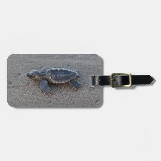 Hatchlings de la tortuga etiquetas maleta