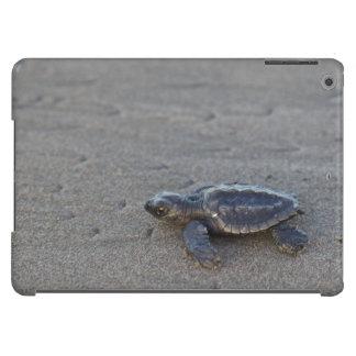 Hatchlings de la tortuga funda para iPad air