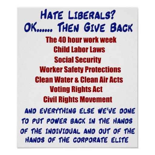 Hate Liberals? Poster