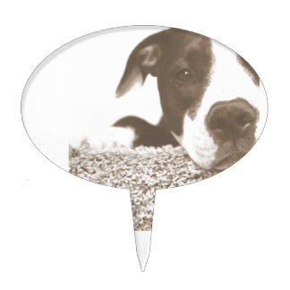 hate the deed not the breed friendly pitbull sepia cake topper