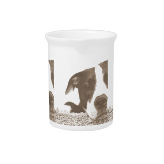 hate the deed not the breed friendly pitbull sepia drink pitcher