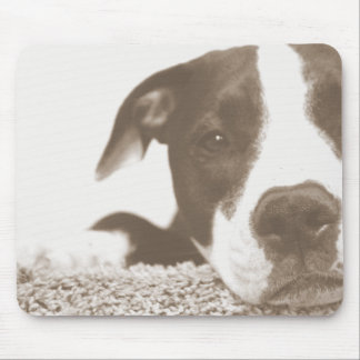 hate the deed not the breed friendly pitbull sepia mouse pad