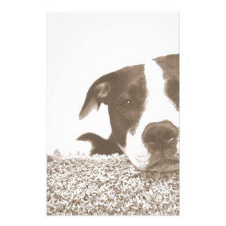 hate the deed not the breed friendly pitbull sepia stationery