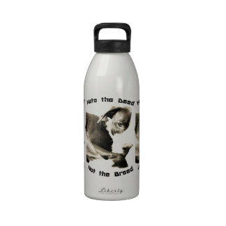 hate the deed not the breed pitbull reusable water bottles