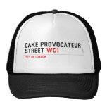 CAKE PROVOCATEUR  STREET  Hats