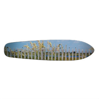 Hatteras Beach Sea Oats and Sand Dune Fence Skateboard Deck
