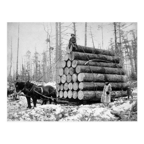 Hauling a Load of Logs 1908 Postcard