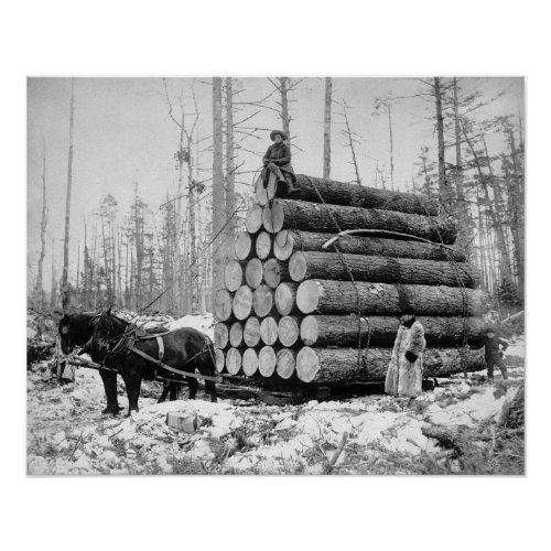 Hauling a Load of Logs 1908 Vintage Photo Poster