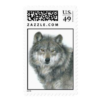 """Haunted Eyes"" Postage, Wolf Drawing by Carla Kurt"