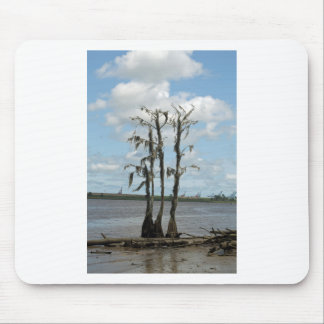 Haunted Swamp Tree Mouse Pad