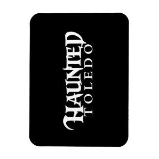Haunted Toledo magnet