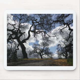 Haunted Trees Mouse Pad
