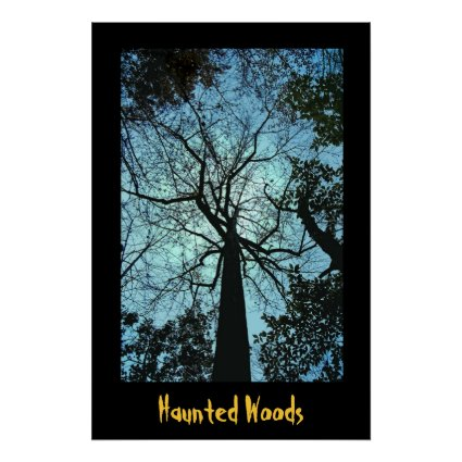 Haunted Woods Poster
