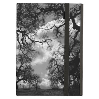 Haunting Black and White Trees iPad Air Cases