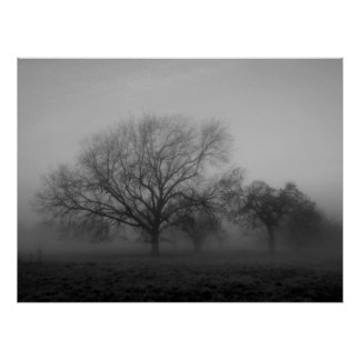 Haunting Fog Canvas Poster