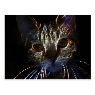Haunting pet cat face art, made of light - gifts postcard
