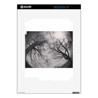 Haunting Trees Decal For The iPad 2