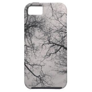 Haunting Trees iPhone 5 Case