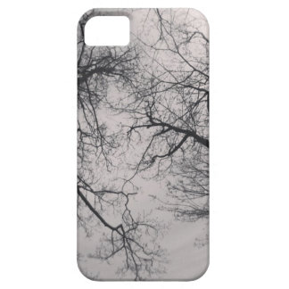 Haunting Trees iPhone 5 Covers