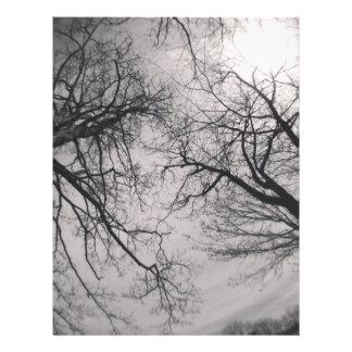 Haunting Trees Letterhead