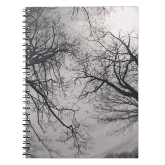 Haunting Trees Notebook