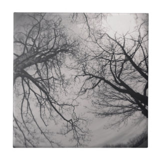 Haunting Trees Small Square Tile