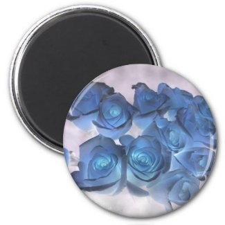 Hauntingly beautiful blue tinged roses magnet