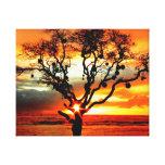 Hauula Hawaii, el árbol sagrado Impresión De Lienzo