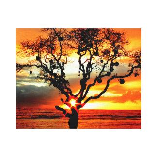 Hauula Hawaii, el árbol sagrado Lienzo Envuelto Para Galerías