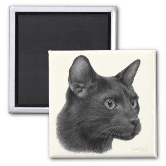 Havana Brown Cat 2 Inch Square Magnet