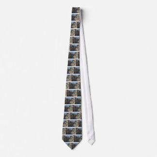 Havana streets tie
