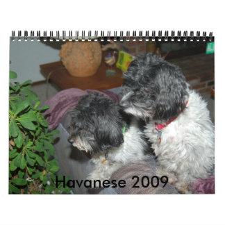 Havanese 2009 calendars