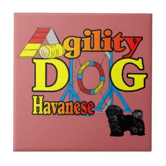 Havanese Agility Ceramic Tile