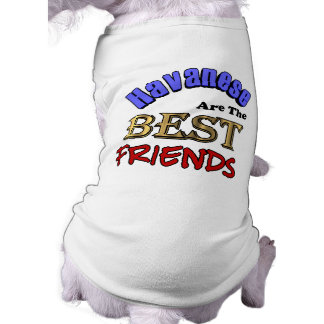 Havanese Are The Best Friends Tee